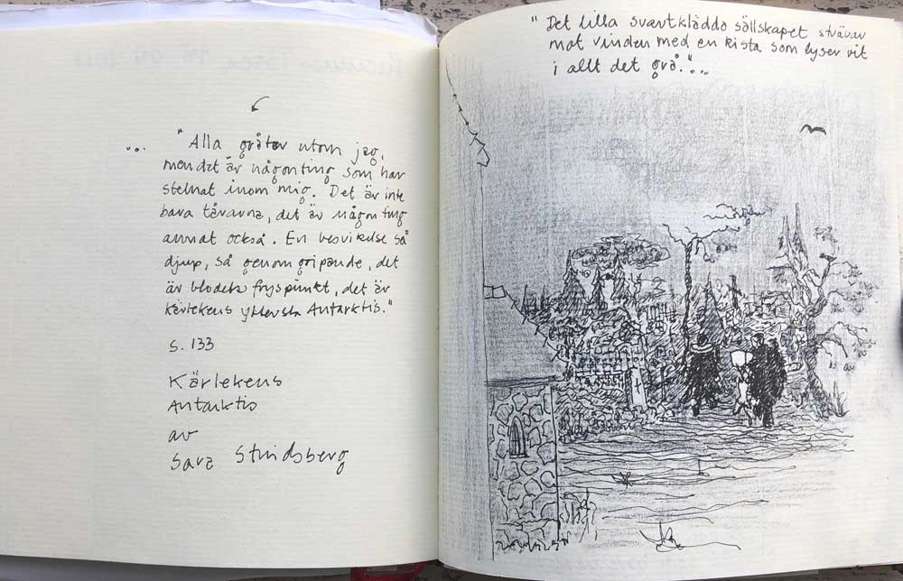 Kærlighedens Antarktis Af Sara Stridsberg, Tegn En Bog Version