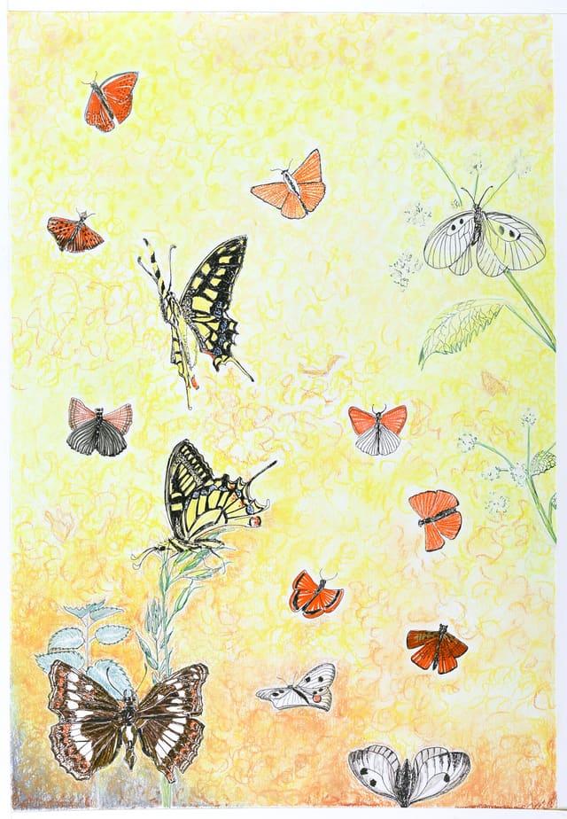 Sommerfulgedalen af IngerChristensen - tegning til noget nummer 1