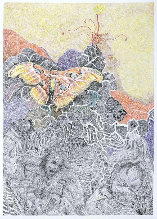 Tegning af Sommerfugledalen, ottende sonet
