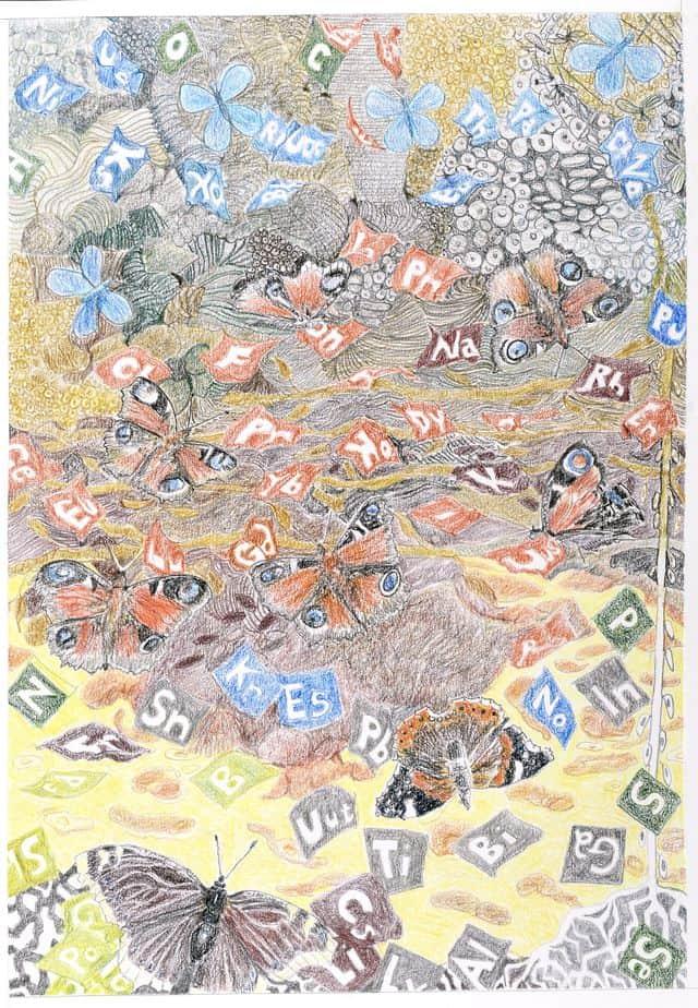 Sommerfugledalen, tegning af femte sonet