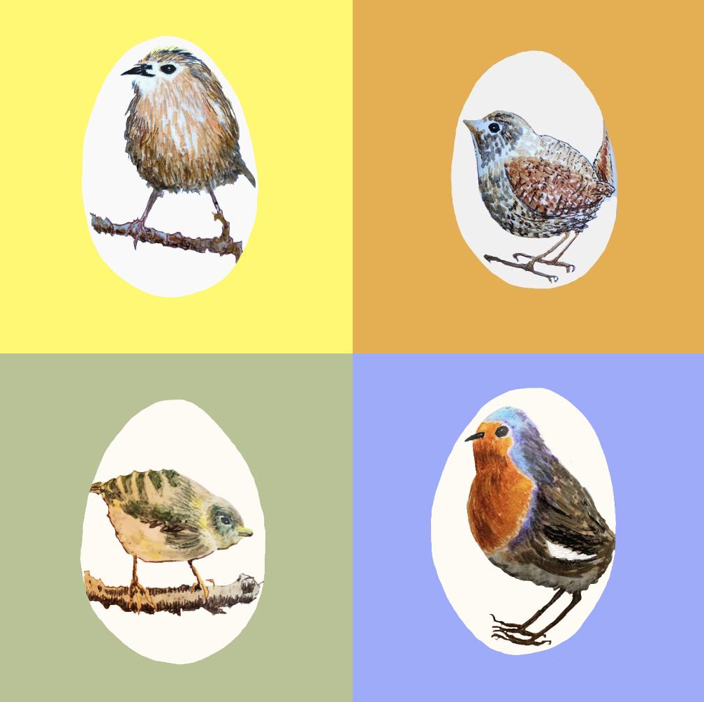 4 Fuglearter I DK Malet På Hver Sit Gåseæg